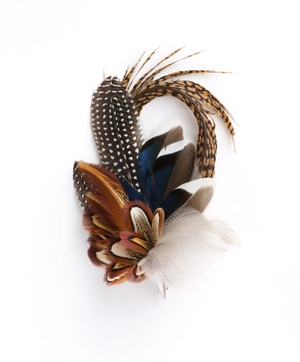 Guinea Mallard Mix Feather Hat Pin/Brooch/Lapel Pin on a white background.