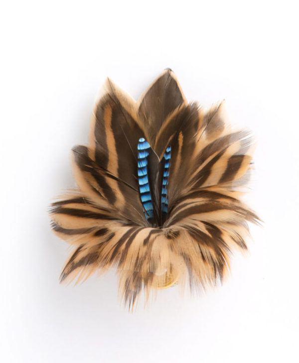 Blue Jay with Brown Mallard Feather Hat Pin Brooch on a white background.