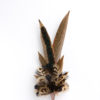 Large Melanistic Feather Hat Pin in a copper cone on a white background.