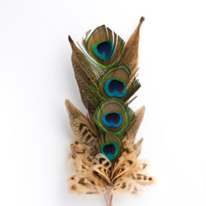 Large Peacock Eyes Feather Hat Pin in a copper cone on a white background.